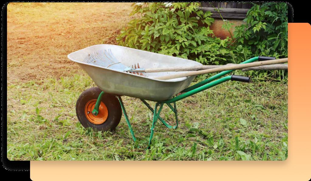A wheel barrow in a garden on a sunny day